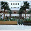 今年もSPGアメックスの無料宿泊アワードでシェラトン・グランデ・オーシャンリゾートへ宿泊してきました